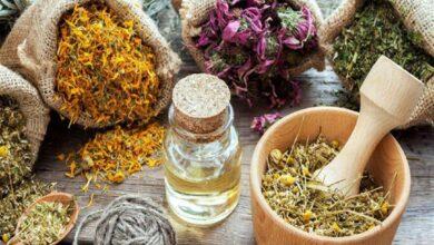 Photo of فوائد علاجات متعددة بالأعشاب للعديد من الأمراض .. لن تصدق الفائدة
