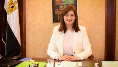 Photo of نبيلة مكرم تدعو المصريين بالخارج للمشاركة في انتخابات مجلس الشيوخ