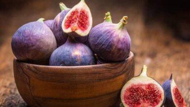 Photo of فاكهة التين تحتوي على العديد من المعادن والفيتامينات المتنوعة