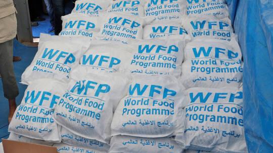 روسيا تتبرع بـ20 مليون دولار لبرنامج الأغذية العالمي لمساعدة سوريا