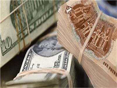 سعر الدولار أمام الجنية المصري من بداية التعاملات في البنوك المصرية
