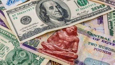 Photo of سعر الدولار مقابل الجنيه بين التراجع والاستقرار بـ البنوك المصرية