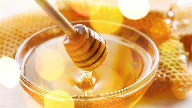 Photo of عسل النحل وفوائده للصحة والبشرة