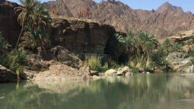 Photo of العارف بالله طلعت يكتب: معمرون على أرض سلطنة عمان(الحلقة الثانية)