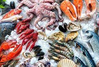 Photo of أسعار الأسماك في سوق العبور اليوم السبت 11 سبتمبر 2021