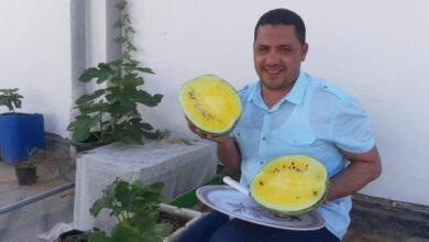 """Photo of الخبير الزراعي محمد عيد يعلن تفاصيل مبادرة """"هنزرع مصر"""""""