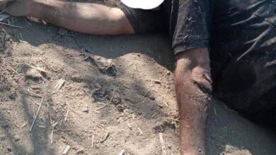 Photo of عاجل .. العثور على جثتين في ظروف غامضة بـ الدقهلية